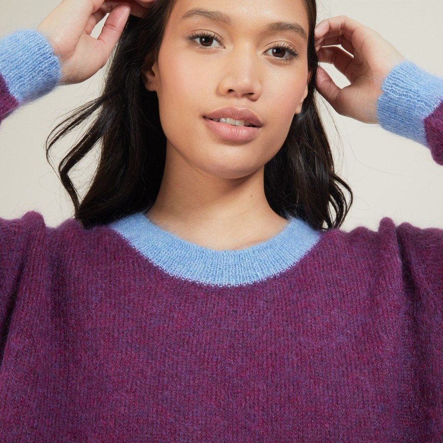 Two-tone round neck mohair sweater - Flavie